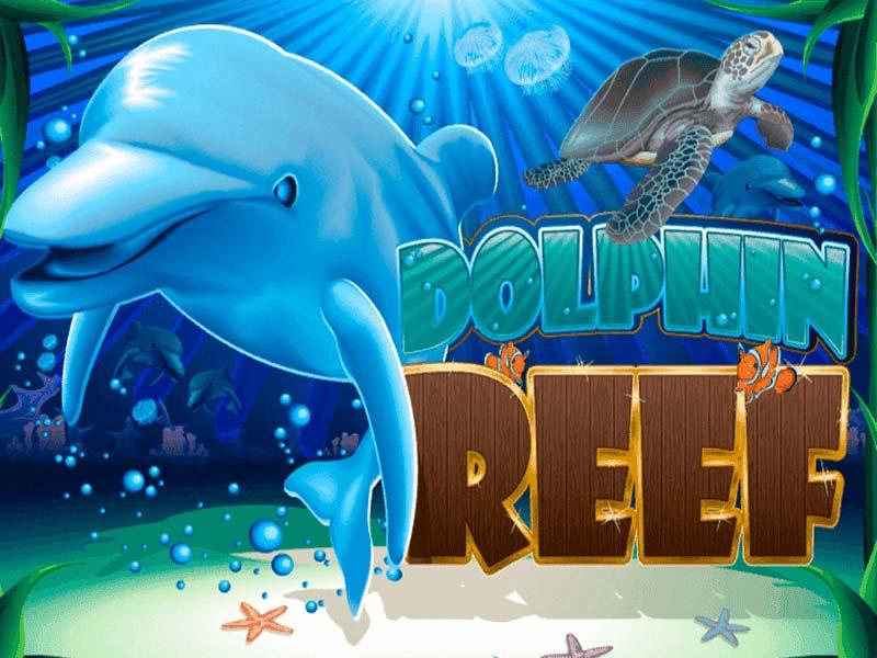 เกม Dolphin Reef
